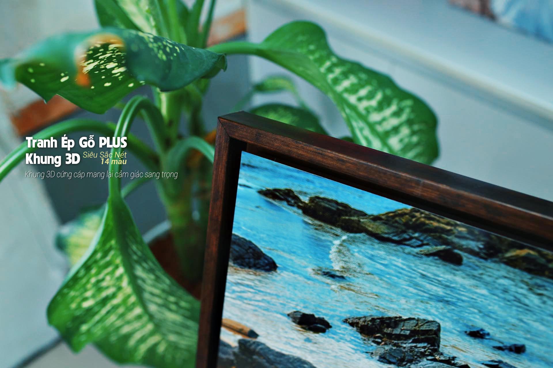 Tranh Ép Gỗ PLUS khung 3D - Siêu Sắc Nét 14 màu